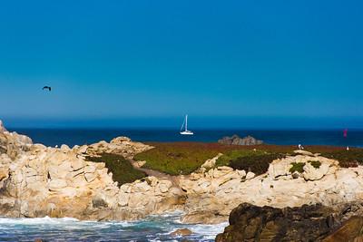 Monterey Ca 406