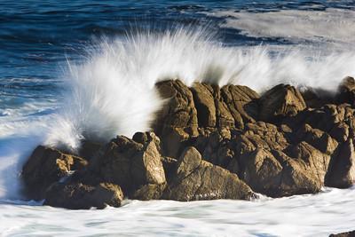 Monterey Ca 089