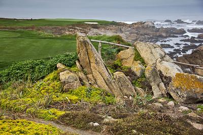 Monterey, Aquarium and Coast 186