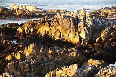 Monterey Sunset 050