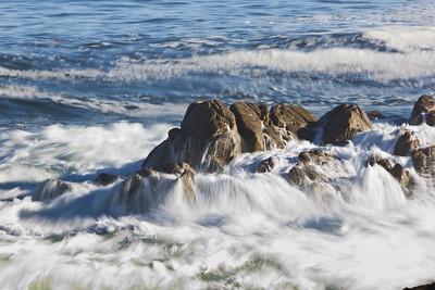 Monterey Ca 095