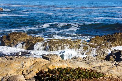 Monterey Ca 150