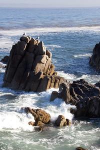 Monterey Ca 250