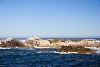 Monterey Ca 411