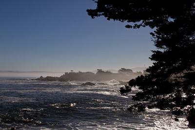 Monterey Ca 206