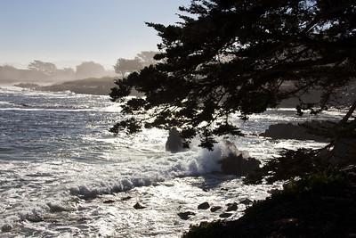 Monterey Ca 163