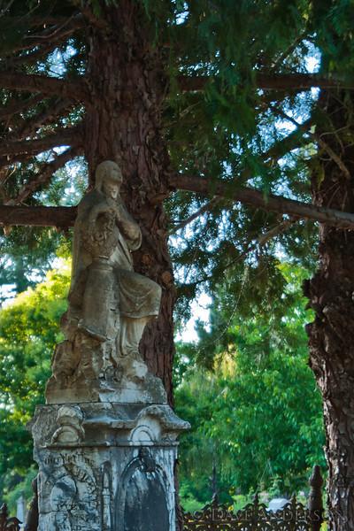 Pine Grove Cemetery, Nevada City, Ca.
