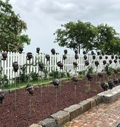 Exposing the Real Story of Slavery: Whitney Plantation