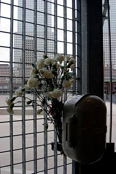 <center>Flowers at Ground Zero  <br><br>New York, NY</center>