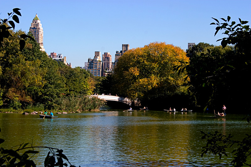 <center>Fall Colors  <br><br>New York, NY</center>