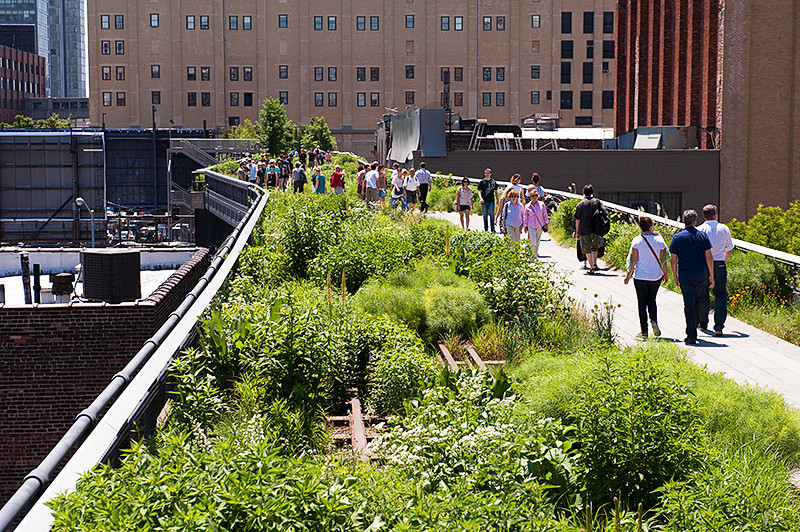 Strolling on the High Line past the gardens at 20th Street. You can see the original railroad rails still in place.