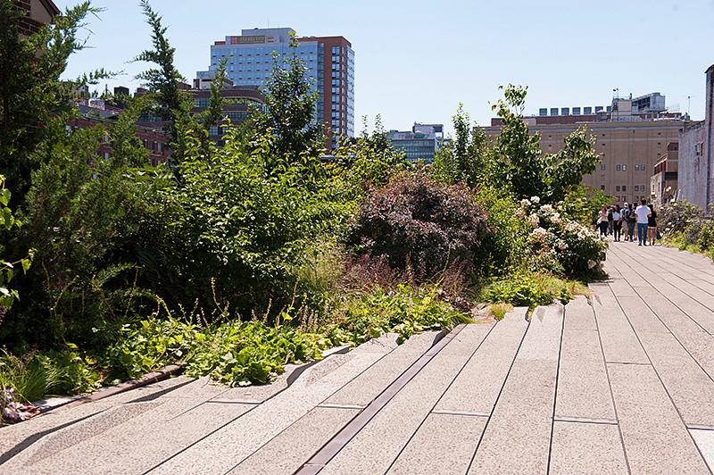 """The High Line 21st Street """"wide"""" garden"""