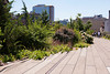 "The High Line 21st Street ""wide"" garden"