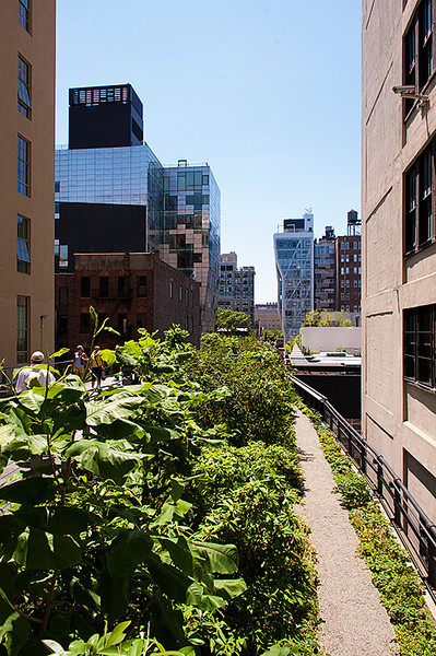 The High Line looking south from between 26th and 25th Streets