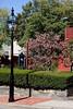 <center>White Horse Tavern <br><br>Newport, RI</center>