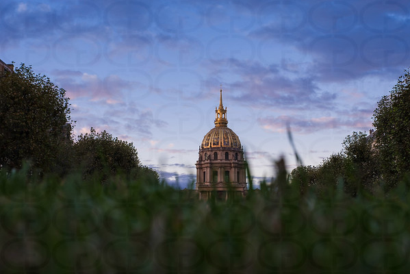A Golden Dome