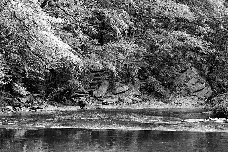 Wissahickon Creek in Wissahickon Park of Fairmount Park