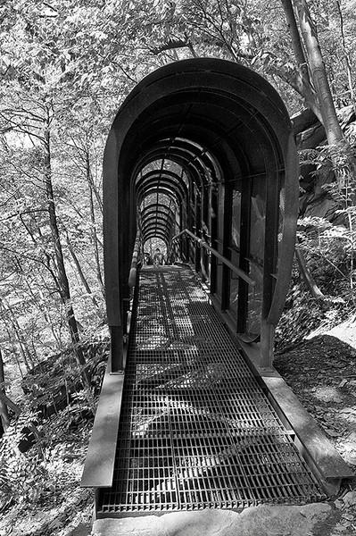 Fingerspan Bridge by internationally renowned artist Jody Pinto in Wissahickon Park of Fairmount Park