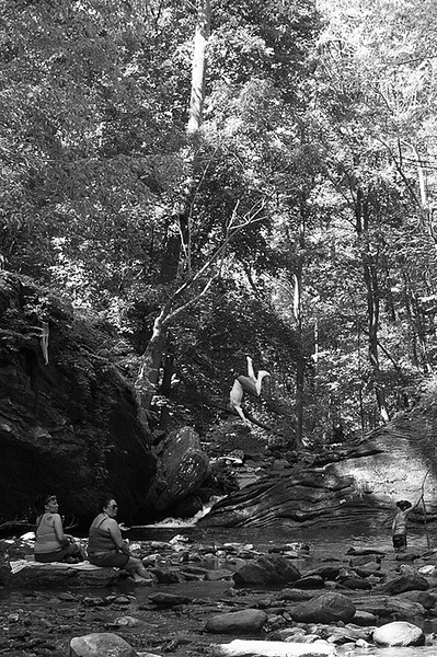 "Jumping into the old swimming hole, the ""Devil's Pool,"" on Memorial Day Weekend at Wissahickon Creek in Wissahickon Park of Fairmount Park"