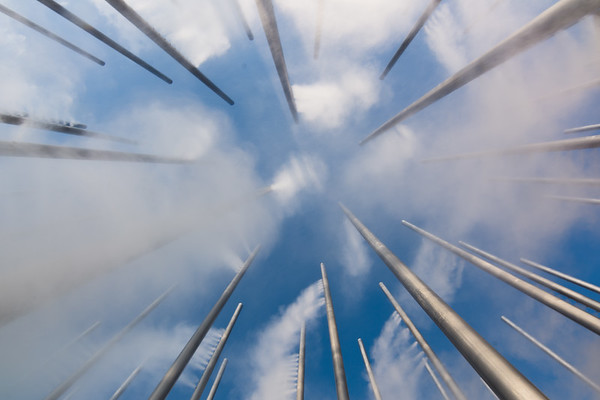 Cloud Arbor from below