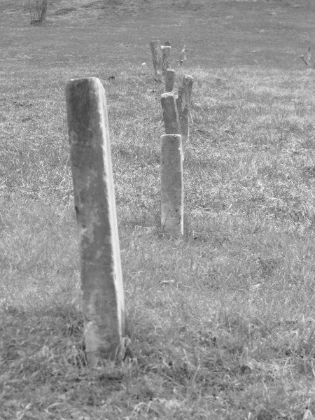 Line of tombstones in the one of the many gravelyards on the site.