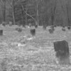 The old tombstones are all dilapidated, sunken and all over spooky