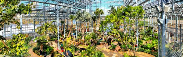 Nicholas Conservatory & Gardens, Rockford, Illinois (Panoramic)