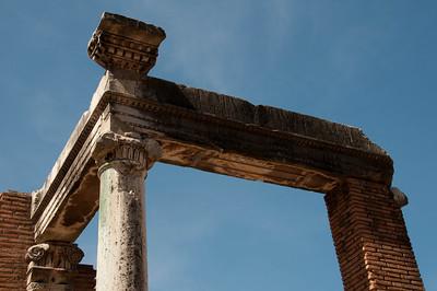 Foro Romano, Casa delle Vestali