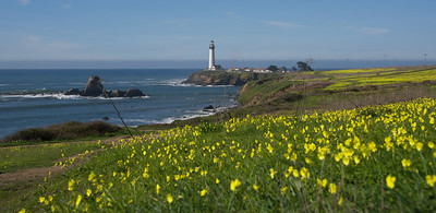 Pigeon Point Lighthouse, along PCH
