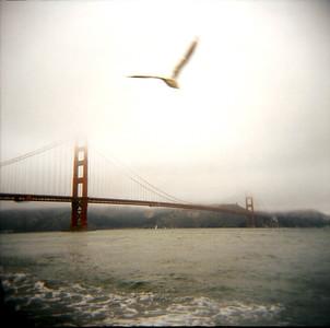 Golden Gate Bridge Holga