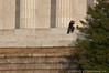 Couple---Lincoln Memorial