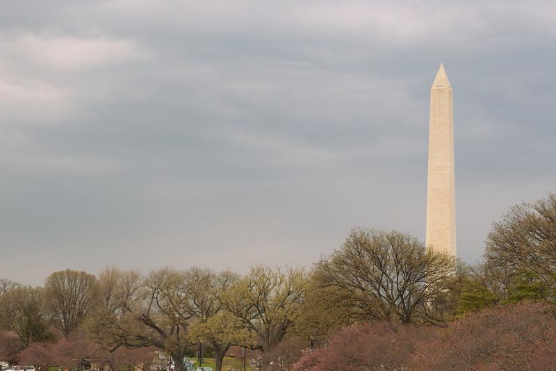 Spring in Washington D.C. looking North toward the Washington Momument from near the Tidal Basin.