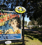 APA FL's People's Choice Winner: Downtown Winter Haven