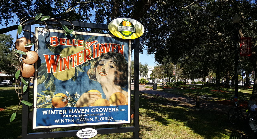 APA FL's People's Choice Winner: Downtown Winter Haven