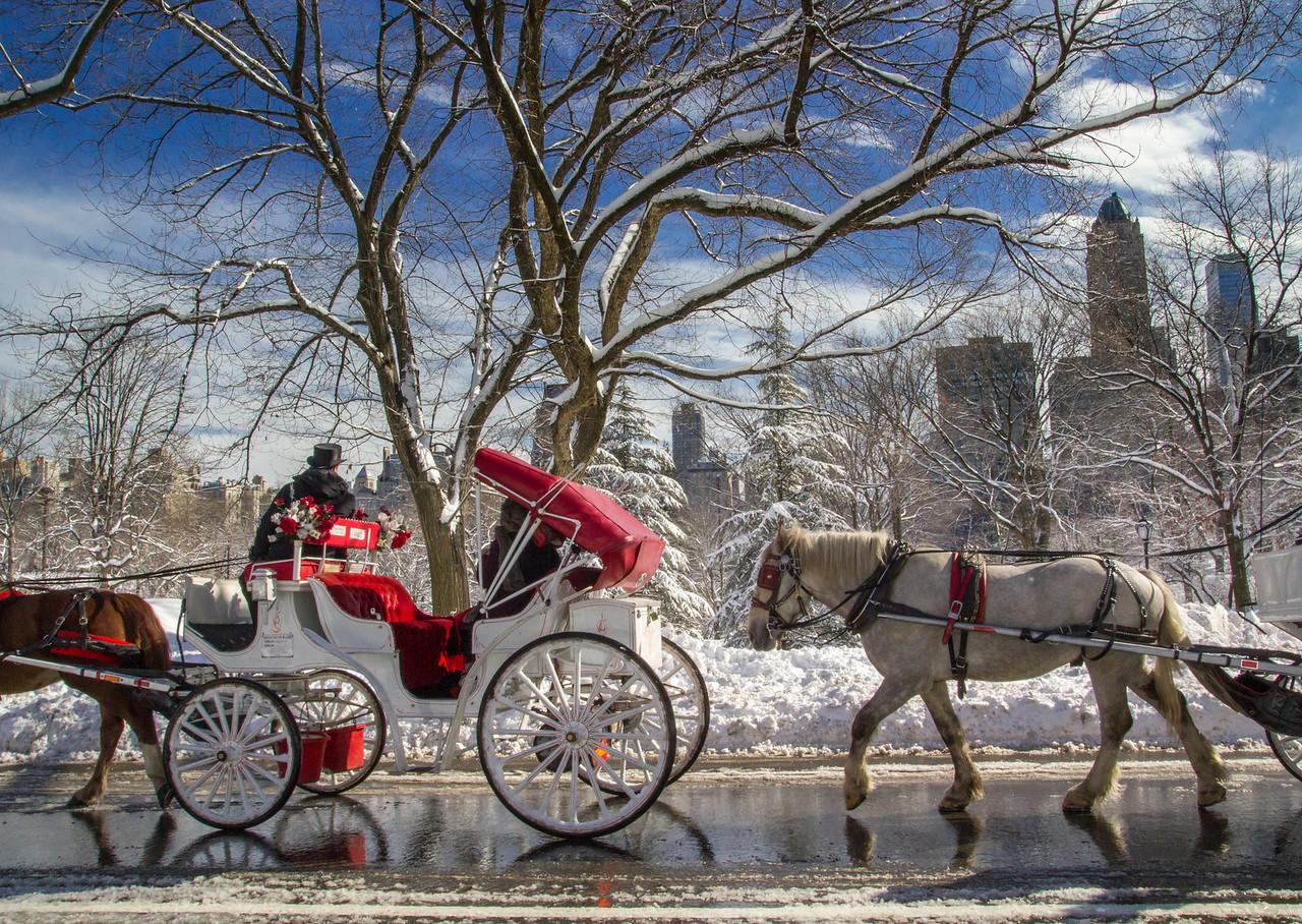 Central Park Snowstorm