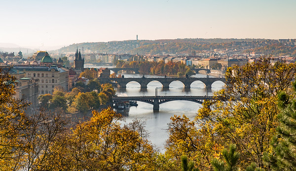 The Bridges of Prague