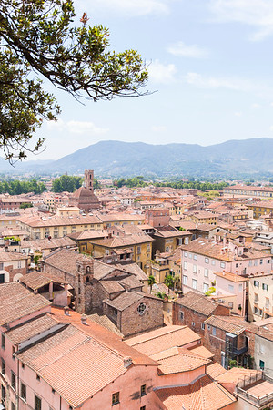 Lucca from the green tower