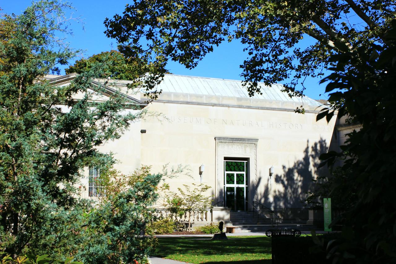 `Museums at the Quadrangle copyrt 2017 mburgess