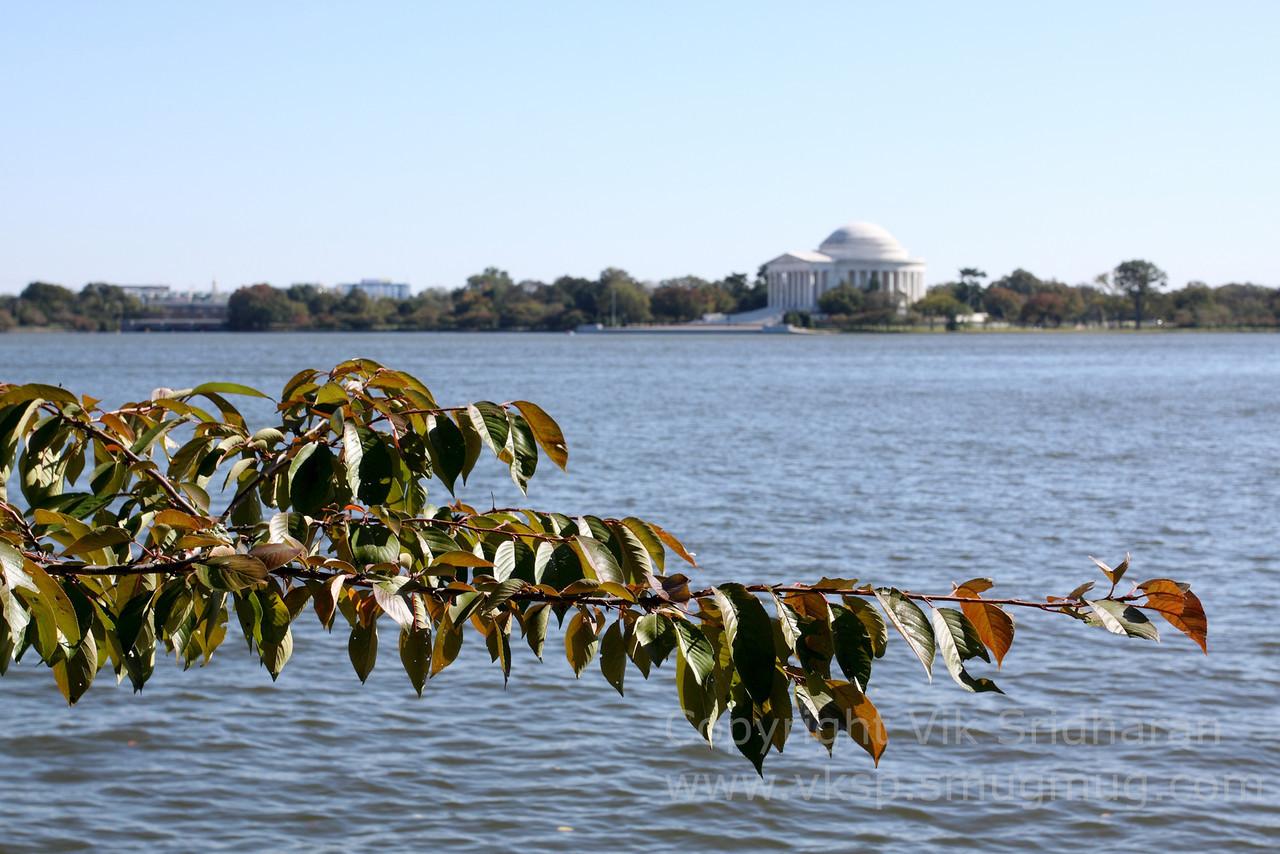 http://www.vksphoto.com/CitiesBuildingsetc/Washington-DC-October-2013/i-g2tKpd4/0/X2/IMG_6200-X2.jpg