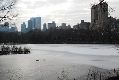 CS 3-Manhattan from  Central Park