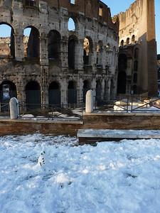 Colosseo e omino di neve