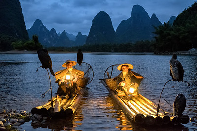 cormorant fishermans on the Li River