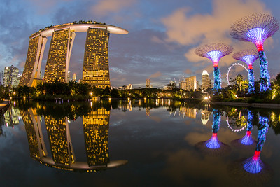 Marina Bay with Super Trees