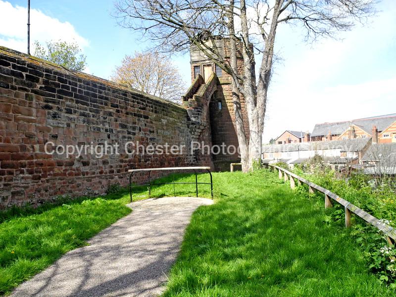 King's Tower Copse: Cow Lane Bridge: Frodsham Street