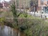 Canal Park: George Street