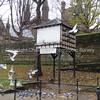 Pigeon Loft: Kaleyards