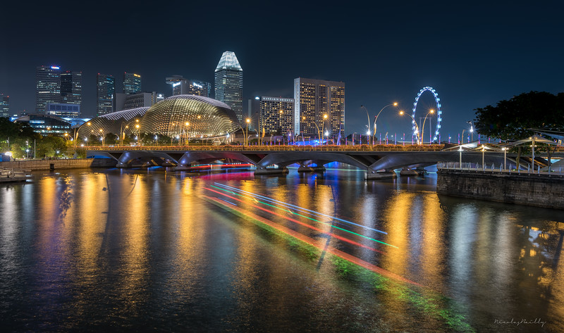 View from Anderson Bridge - Singapore