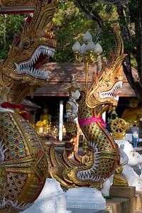 Wat Phra That Doi Tung, Chiang Rai