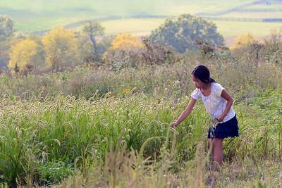 Pleasant Hill back acreage