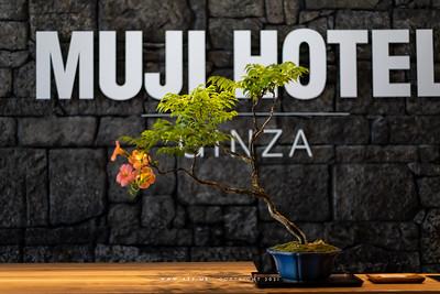 Muji, Ginza